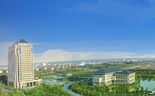 新疆特变电工股份有限公司
